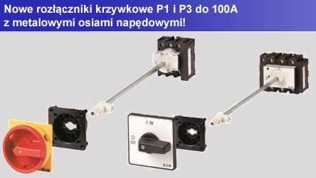 P1_3_New.jpg