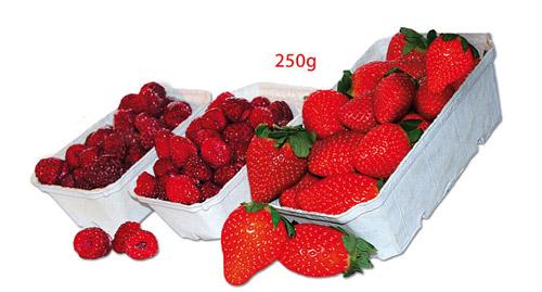 opakowania-na-owoce-250g.jpg