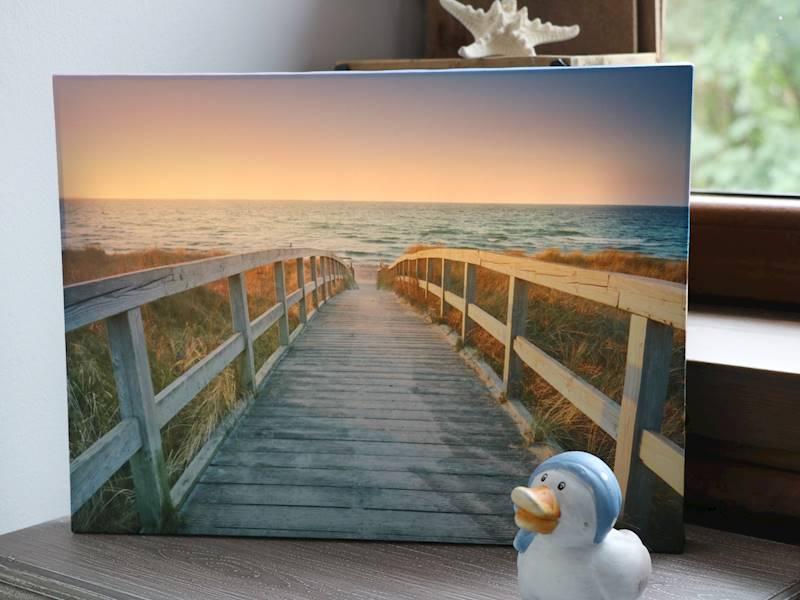 MARINE LED image Holiday 30X40cm 23141040 NEON LED