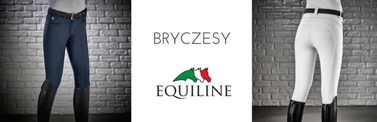 BRYCZESY_EQUILINE.jpg
