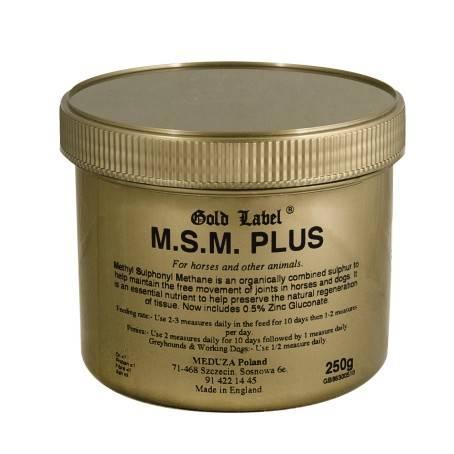 MSM Plus GL na stawy 250g