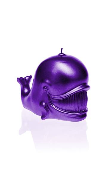 Świeca Candle Funny Whale Violet Metallic