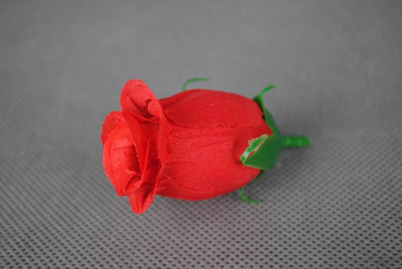 Roża w pąku