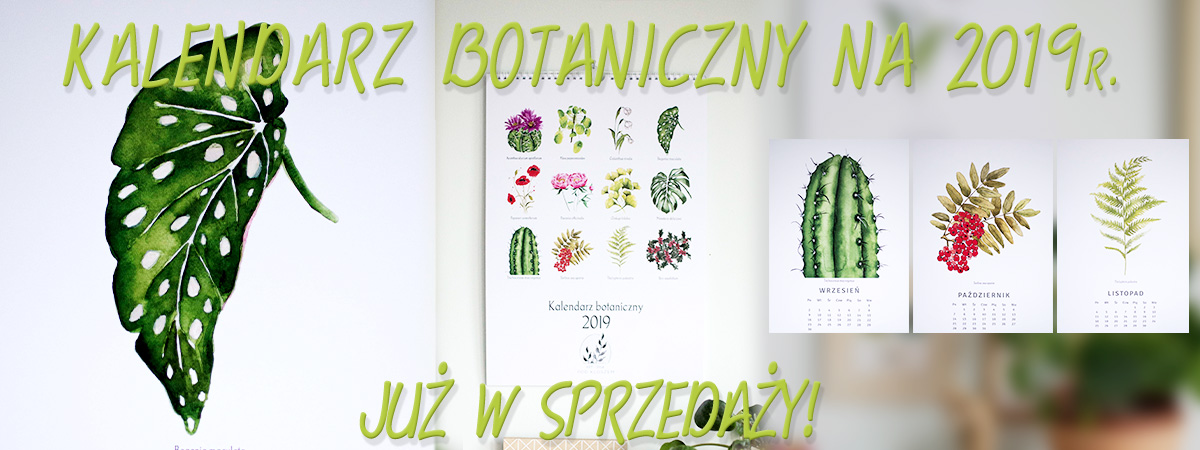 Kalendarz_botaniczny_1_v3.jpg