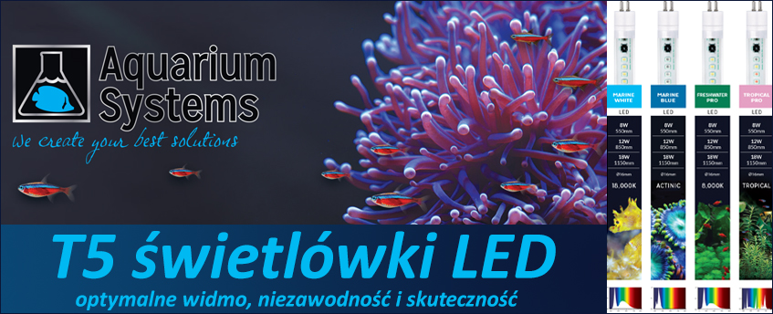 AquariumS-T5.jpg