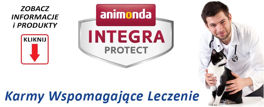 integra1A.jpg