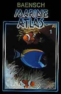 ATLAS AKW. TOM MARINE 1 MIĘKKA